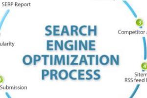 Portfolio for SEO expert, on page seo, wordpres seo