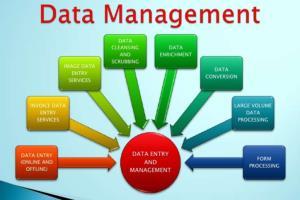 Portfolio for Online Data Management Services