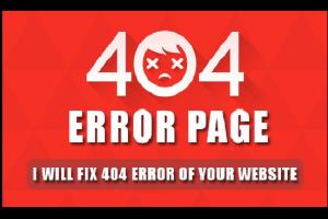 Portfolio for I will fix 404 ERROR of your Website