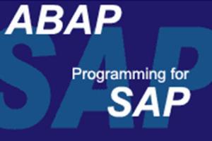 Portfolio for SAP Senior Analyst / Developer