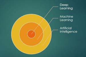 Portfolio for AI and Machine Learning