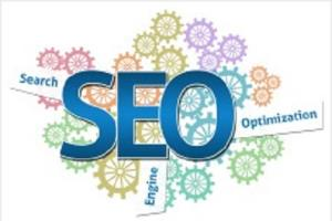 Portfolio for Ethical SEO Services