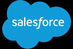 Portfolio for SalesForce