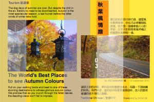 Portfolio for Slide Ad Design Edit