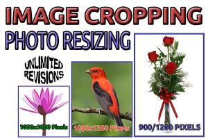 Portfolio for 100 Image Resize and Crop,Photo Resizing