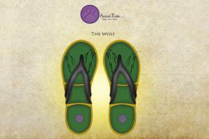 Portfolio for Shoe Designer | Product Designer