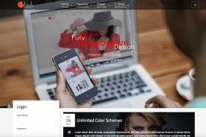 Responsive WordPress theme design