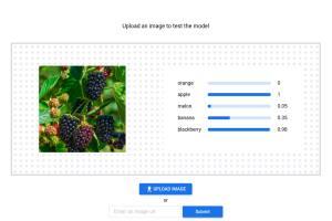 Portfolio for UI Architect, Web Developer