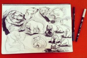 Portfolio for Sketch