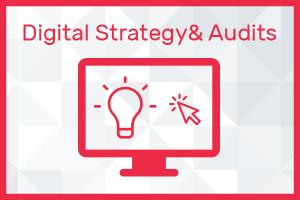 Portfolio for Digital Strategy & Audits