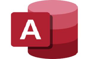 Portfolio for Microsoft Access Guru
