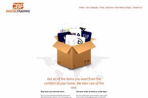 Portfolio for Website Designer and Programmer