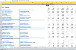Portfolio for Making of financial projections (Excel)