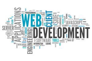 Portfolio for Web Developer-Wordpress Expert-Ecommerce