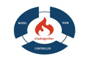 Portfolio for Website Developement