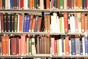 Portfolio for Expert consulting in linguistics