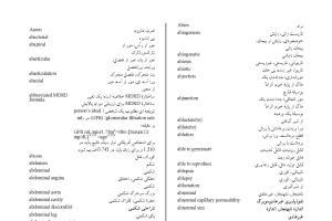 Portfolio for Academic Professional Translation