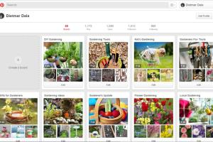 Portfolio for Pinterest Expart