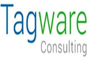 Portfolio for Web design and development, wordpress