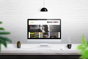 Portfolio for Programming/Web Development/Web Design