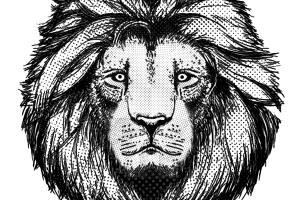 Portfolio for Manga Illustration and design work