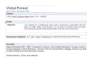 Portfolio for Digital Marketing Analyst, SEO, PPC,