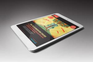 Portfolio for Kindle   |  EPUB   |   iBooks