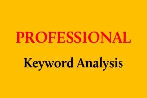 Portfolio for Pofessional Keyword Analysis