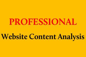 Portfolio for Professional Website Content Analysis