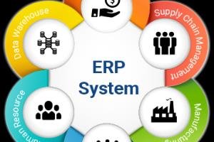 Portfolio for ERP Software
