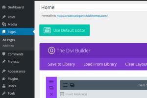 Portfolio for Divi Wordpress Theme Customization