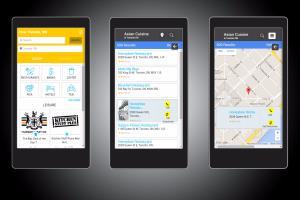 Portfolio for Hybrid app developing