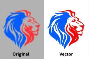Portfolio for Vector tracing logo or image