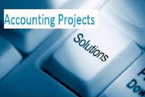 Portfolio for Accounting, Bookkeeping and Budgeting