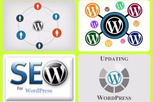 Portfolio for I will create WordPress Website or Blog