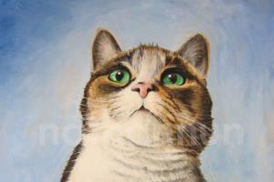 Portfolio for Painting Pet Portraits