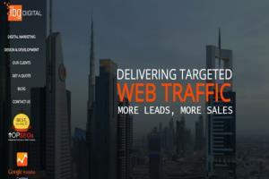 Portfolio for Web Site Audit Report