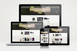 Portfolio for Wordpress websites design