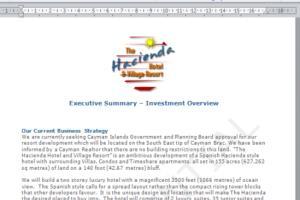 Portfolio for Business Consulting