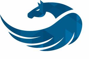 Portfolio for Web & Mobile App Development and testing