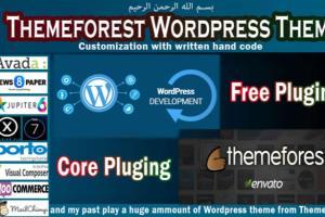 Portfolio for Customize Themeforest WordPress Theme