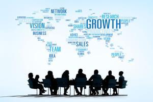 Portfolio for Network Marketing