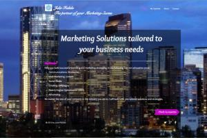Portfolio for Marketing Strategy & Planning