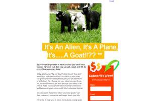 Portfolio for Sales Writing