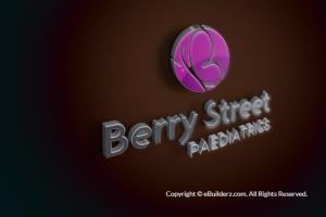 BERRY STREET - BRANDING