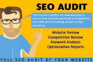 Portfolio for WEBSITE SEO AUDIT REPORT