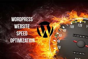 Portfolio for Wordpress Website Speed Optimization