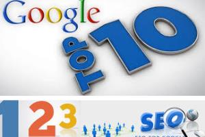 Portfolio for do more than 800 social  bookmarking and