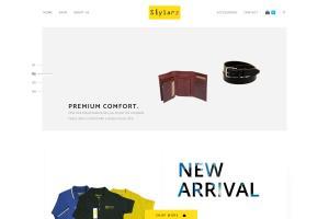 Website Homepage(stylarz.com)