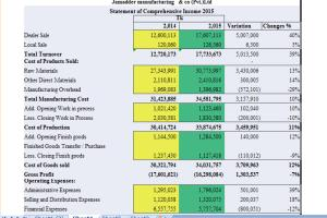 Portfolio for Advance Excel
